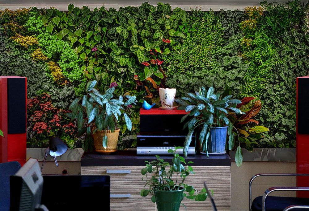 دیوار سبز آناهیتا | دیوار سبز | نمای سبز | هیدروپونیک | ziaeco