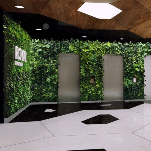 دیوار سبز رویال | دیوار سبز | نمای سبز | هیدروپونیک | رضا دانشمیر | ziaeco