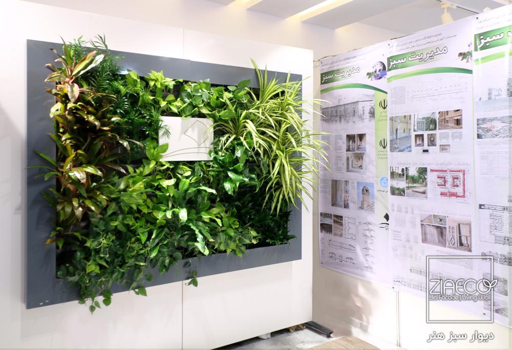 دیوار سبز هیدروپونیک دانشگاه هنر تهران | طراحی و اجرا توسط ziaeco | گیرین وال