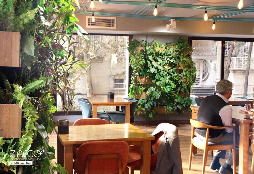 دیوار سبز کافه OM| طراحی و اجرا توسط ziaeco | گیرین وال