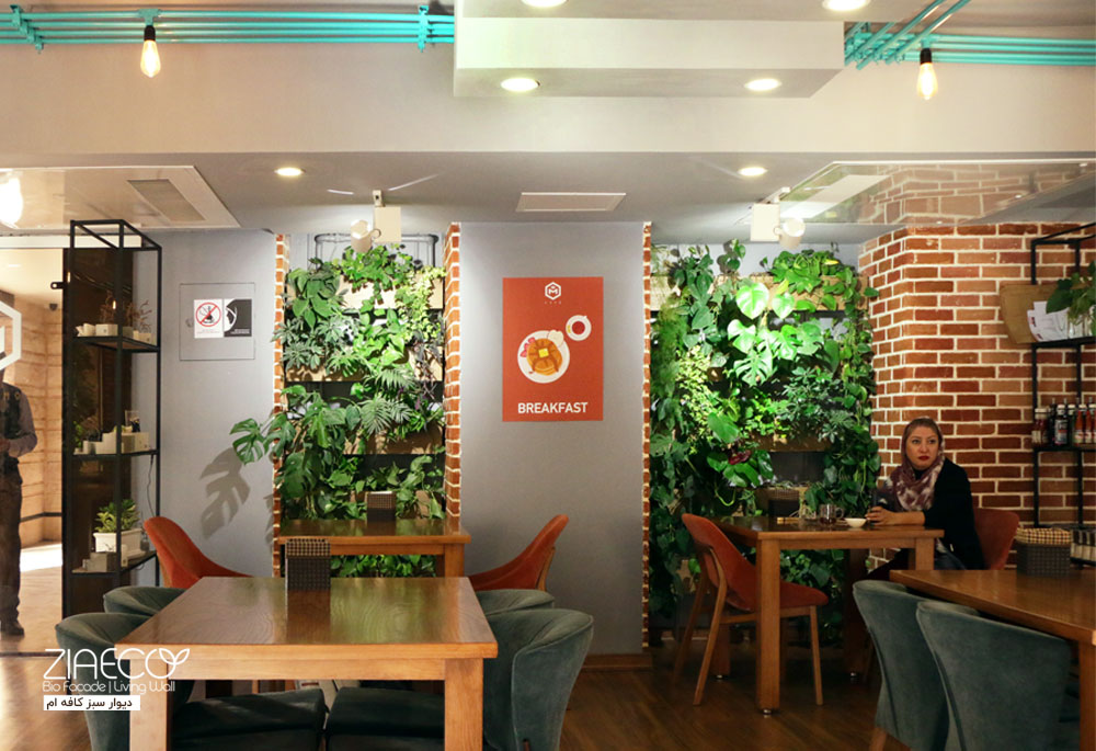 دیوار سبز یا گرین وال ضیااکو به روش گلدان های دیواری Tray در فضای داخلی کافه OM واقع در محمودیه تهران