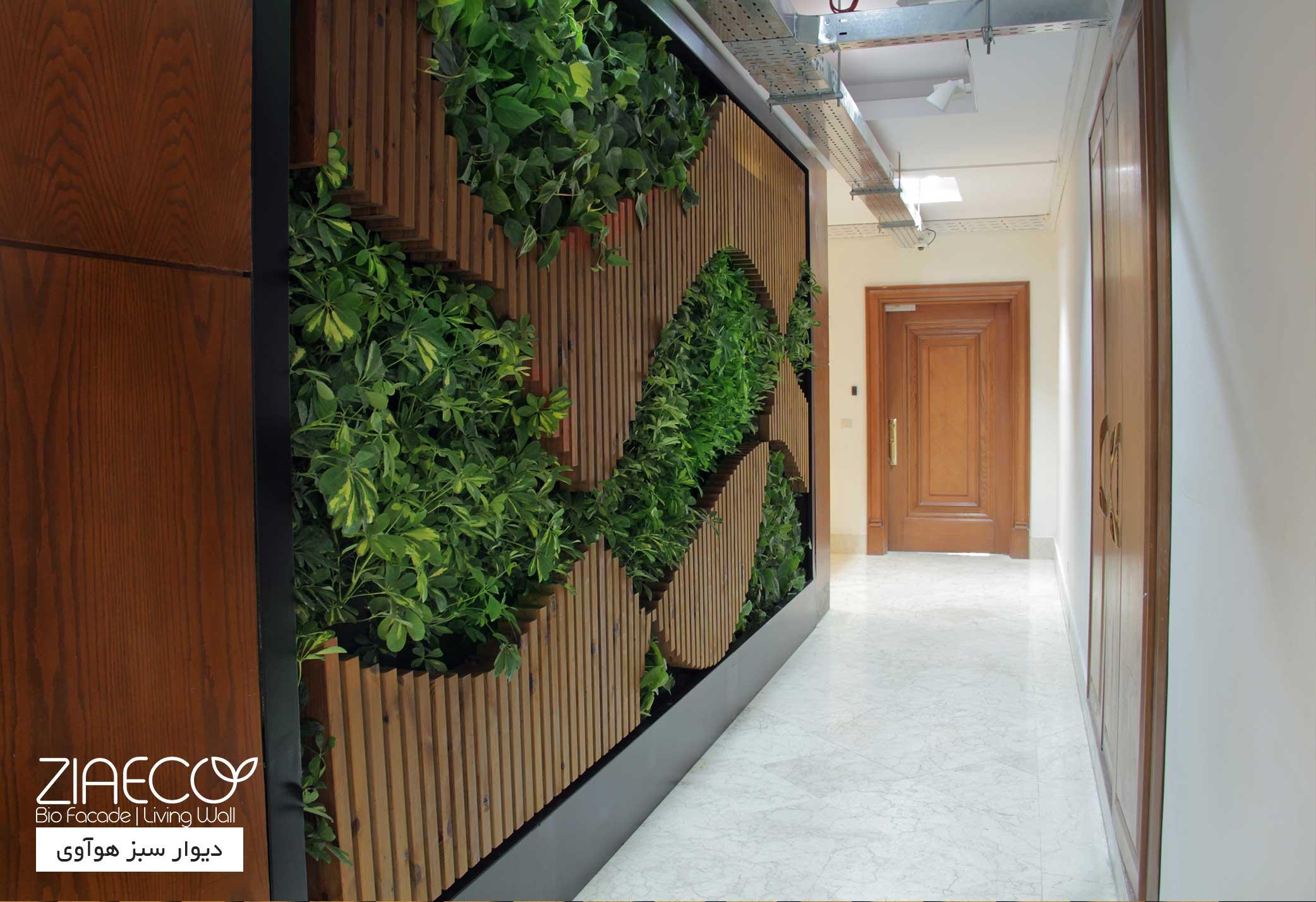 دیوار سبز یا گرین وال داخلی ضیااکو به روش هیدروپونیک در فضای داخلی ساختمان اداری شرکت هواوی واقع در سعادت آباد تهران