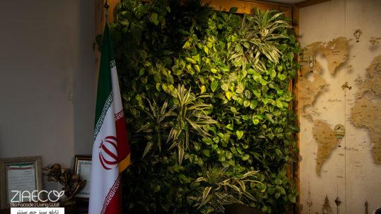 دیوار سبز جم سنتر
