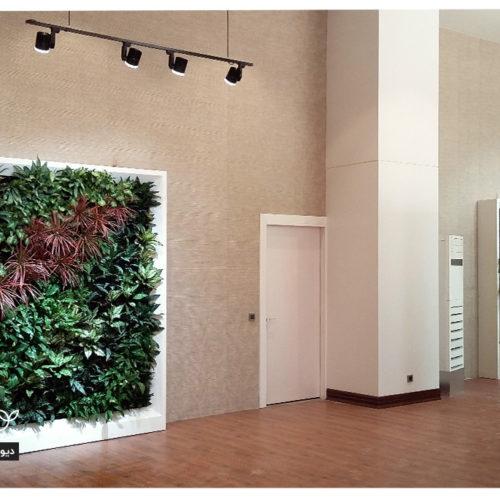دیوار سبز تری