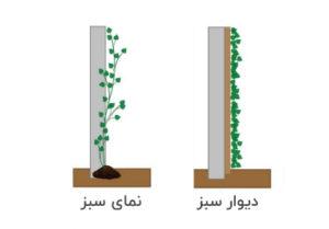 تفاوت دیوار سبز با نمای سبز