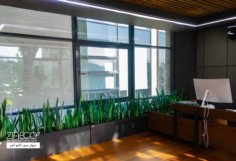 دیوار سبز یا گرین وال ضیااکو به روش هیدروپونیک در فضای داخلی شرکت ادمیرال در مجتمع اداری تکنوآجر واقع در فرمانیه تهران
