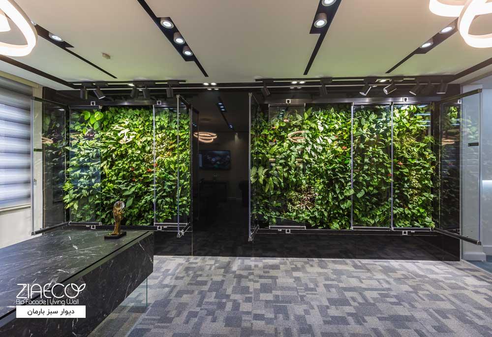 دیوار سبز یا گرین وال ضیااکو به روش هیدروپونیک در فضای داخلی املاک بارمان واقع در بلوار فردوس تهران