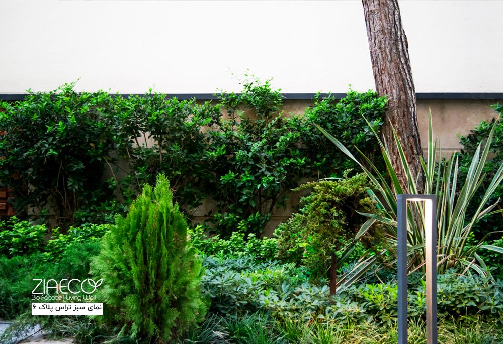 نمای سبز مجتمع مسکونی پلاک 6 واقع در دروس تهران