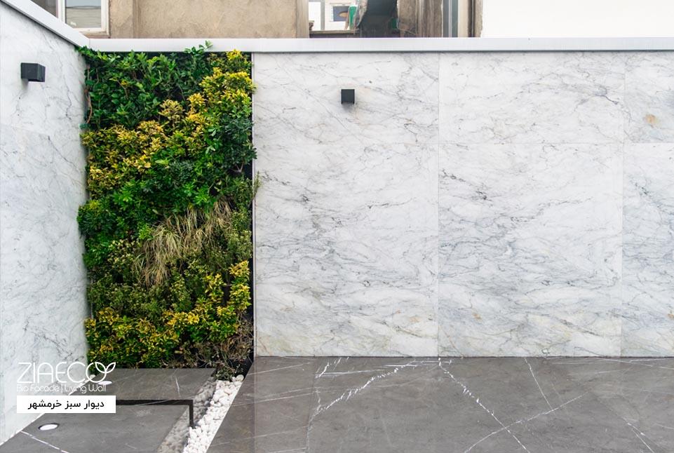 دیوار سبز یا گرین وال ضیااکو به روش هیدروپونیک در فضای بیرونی یک نمایشگاه ماشین واقع در شهیدبهشتی تهران