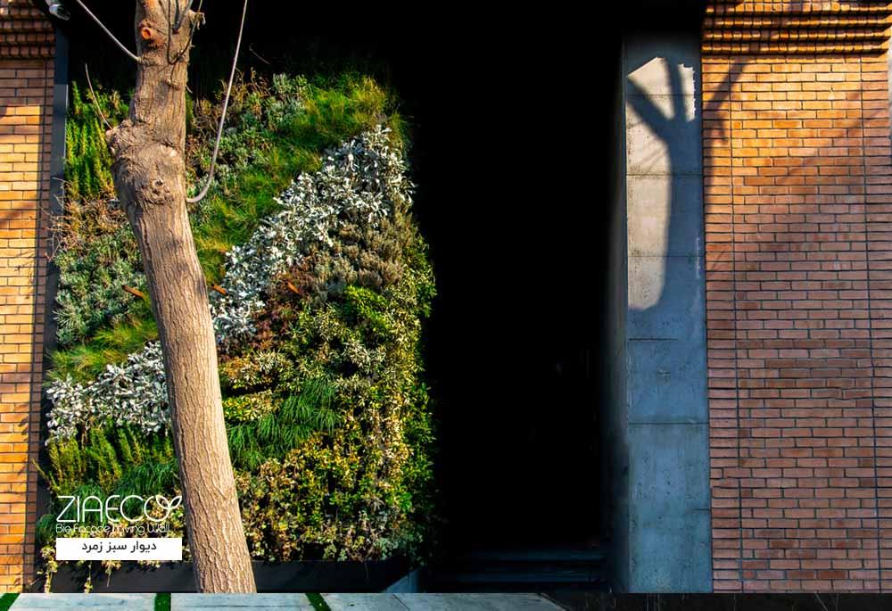 دیوار سبز یا گرین وال ضیااکو به روش هیدروپونیک در فضای بیرونی مجتمع تجاری زمرد واقع در قبای تهران
