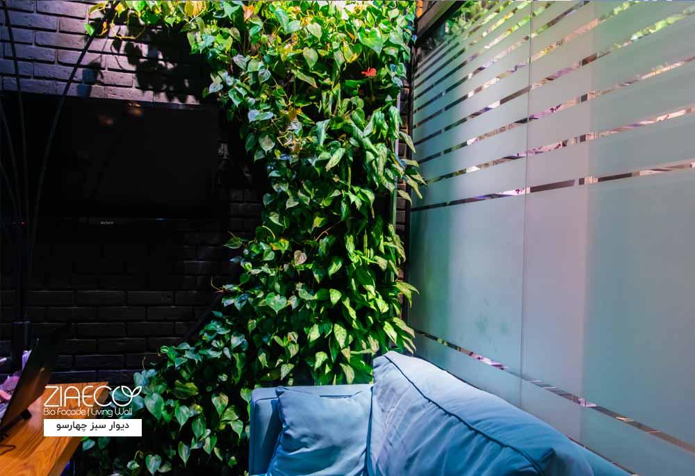 دیوار سبز یا گرین وال داخلی ضیااکو به روش هیدروپونیک در فضای داخلی فروشگاهی واقع در مجتمع چارسو تهران