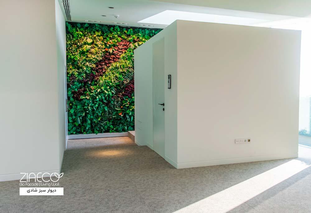 دیوار سبز یا گرین وال داخلی ضیااکو به روش هیدروپونیک در فضای داخلی پاویون شرکت ساختمانی لوتوس واقع در زعفرانیه تهران