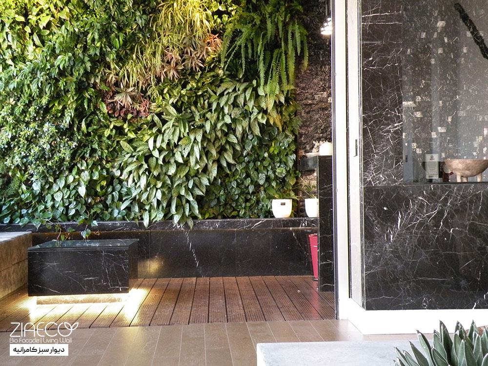 دیوار سبز یا گرین وال ضیااکو به روش هیدروپونیک در فضای تراس یک خانه مدرن در کامرانیه تهران
