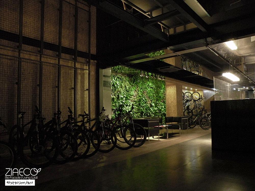 دیوارسبز یا گرین وال ضیااکو به روش هیدروپونیک در فضای داخلی نمایشگاه دوچرخه واقع در میدان قزوین تهران