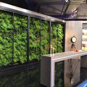 دیوار سبز ضیااکو به روش هیدروپونیک