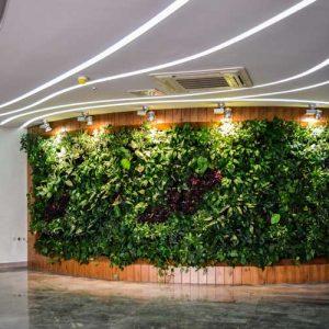 دیوار سبز ضیااکو به روش گلدان های دیواری