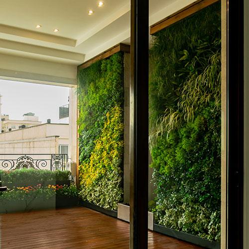 دیوار سبز یا گرین وال ضیااکو به روش هیدروپونیک در فضای نیمه باز یک خانه ی لوکس واقع در دیباجی تهران