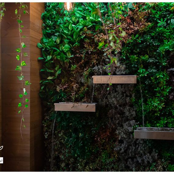 دیوار سبز یا گرین وال ضیااکو به روش هیدروپونیک در فضای نیمه باز یک خانه ی لوکس واقع در قیطریه تهران