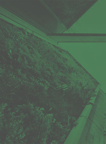 گرین وال